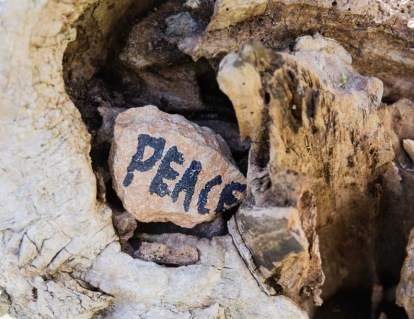Peace Stones in Tree