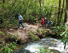 Hiking along Batson Creek