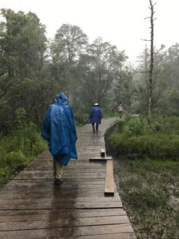 Raining on the Boardwalk