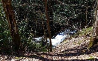 Cascade Beside the Trail