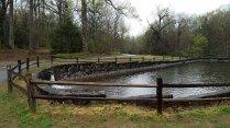 Fish Hatchery Pond