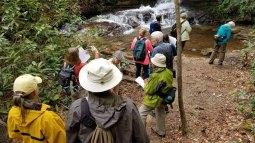 A Closer Look at Middle Falls