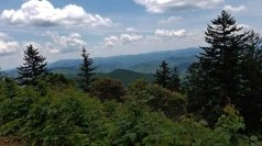 Another View from Rough Butt Bald Overlook