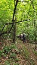 Shut-in Trail