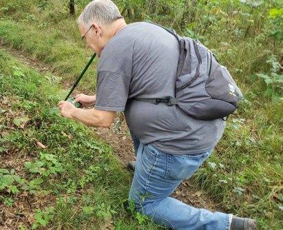 Capturing the Devil's Stinkhorn