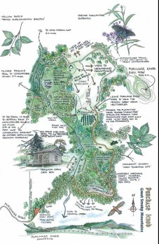 Purchase Knob Trail Map