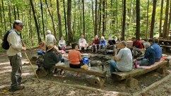 Lunch Around The Campfire