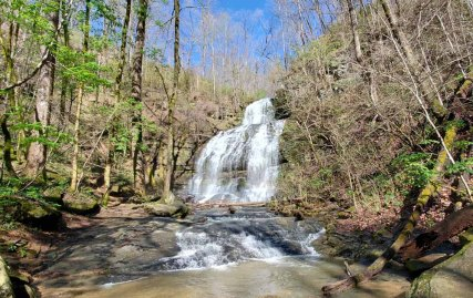 Station Cove Falls - Looking Really Good!