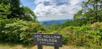 View at Log Hollow Overlook