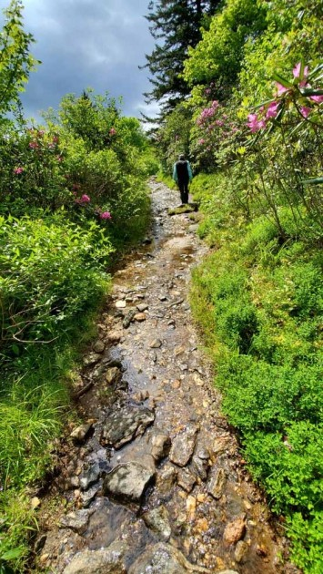 The Wet and Rocky Trail!