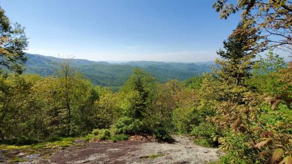 View Looking East from Wet Camp Gap