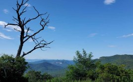 View of Looking Glass Rock from Blue Ridge Parkway