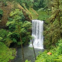 Lower South Falls, Silver Falls State Park