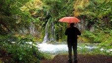 Needle Falls, Salmon Creek Falls Campground, Oakridge