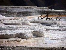 Mammoth Hot Springs - Travertine Terraces