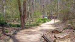 Start of Mesic Forest Trail